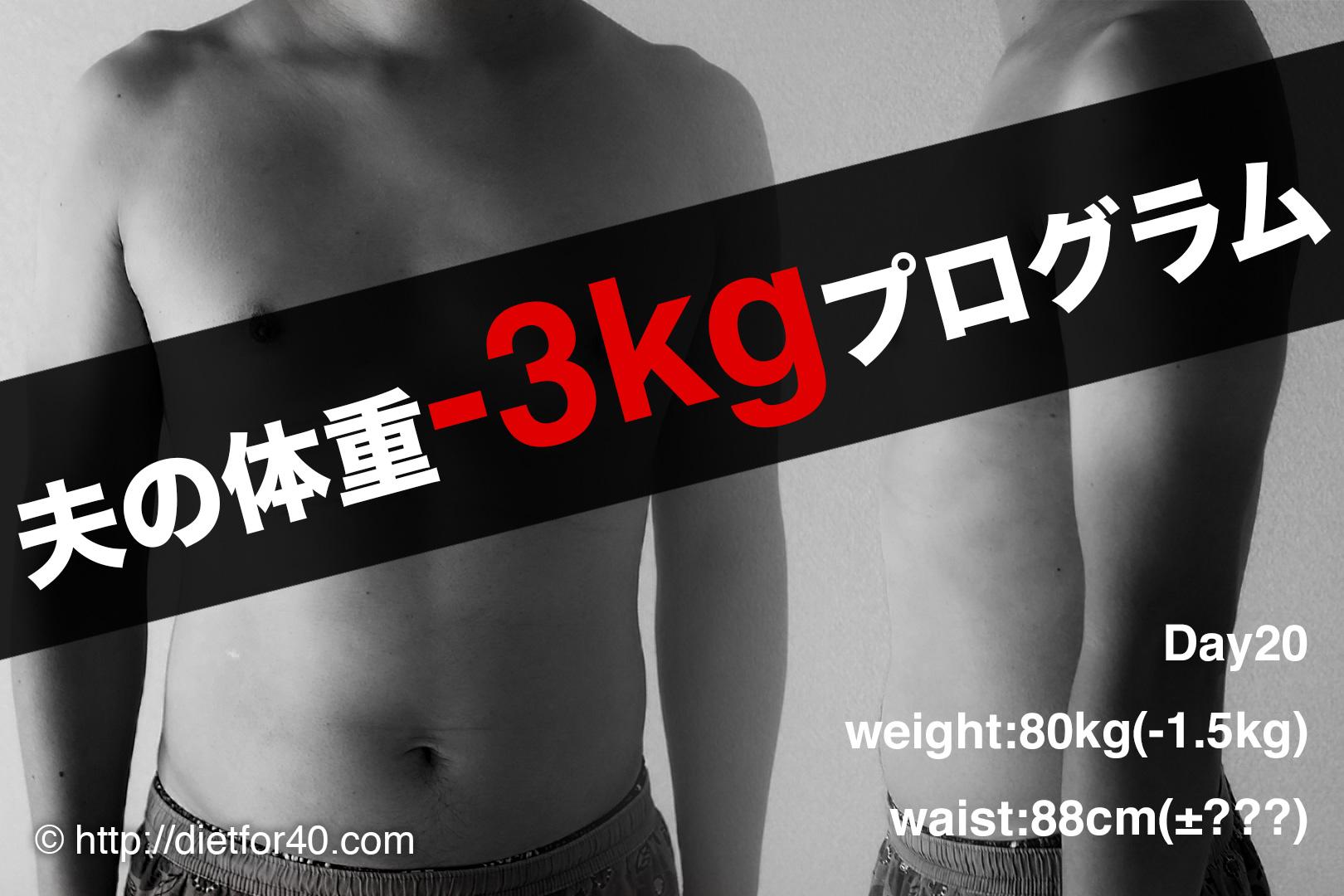 otto-3kg
